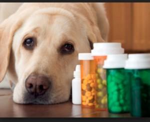 Vaistų pardavimas